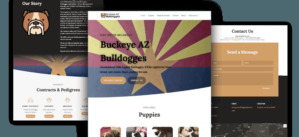 Web Design portfolio image of Buckeye AZ Bulldogges